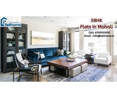Luxury Apartments in Chandigarh
