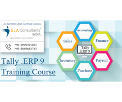 Best Tally ERP 9 Training Course Institute in Gurgaon – SLA Consultants Gurgaon