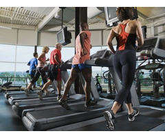 Treadmill Belt | Online Treadmill Belt | Home Treadmill Belt - Image 2/2