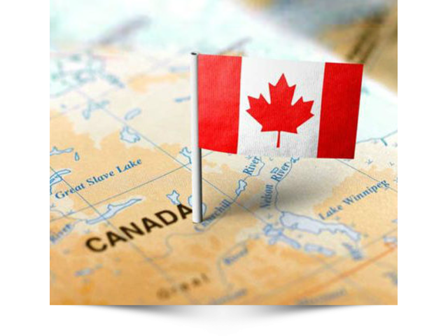 Canada Immigration Services - 1/1