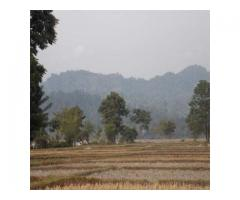 Ideal Eco Tourism Land Just Rs 8 Lakhs is on Sale