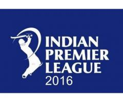 Test Your Cricket skills in this IPL only with Champs11