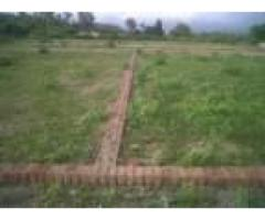usha nagar kiloy village good water facility total area 1330 land for sale