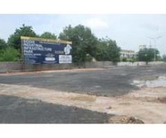 Industrial Park at Waghodia, Opp.GIDC, VADODARA. GUJARAT, INDIA.