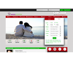 Go for matrimonial scripts available online and save money