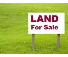 Big Industrial Land for Sell