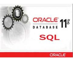 Oracle Training with Certificate in Behala, Thakurpukur