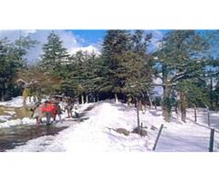 Best Himachal Tour Package - chandigarhtaxiwala.com