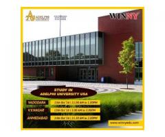 Study in the Adelphi University of USA