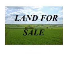 Resale plots for sale in Somangalam