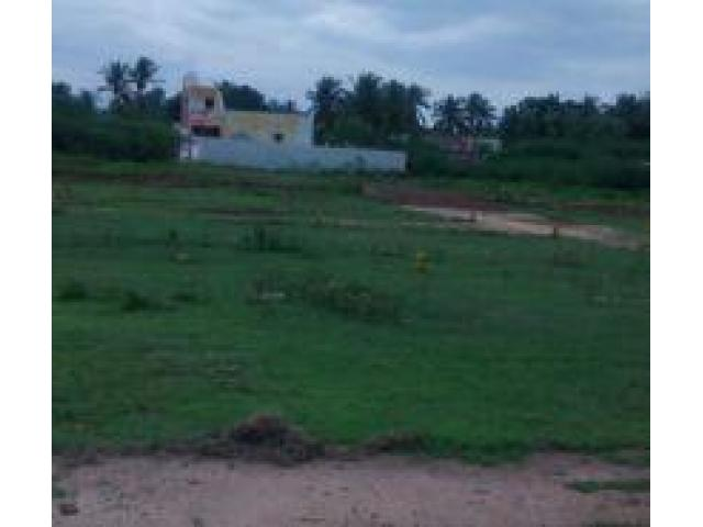 Real value nagar in Somangalam part - 1