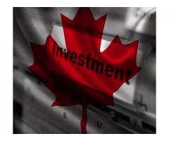Top Notch Investment Visa Consultant