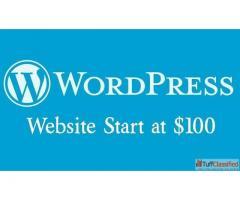 Word Press Website Start at 100$