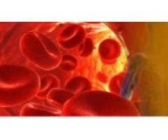 Homeopathic Doctors For Blood Pressure , Homeopathy Treatment For Hypertension
