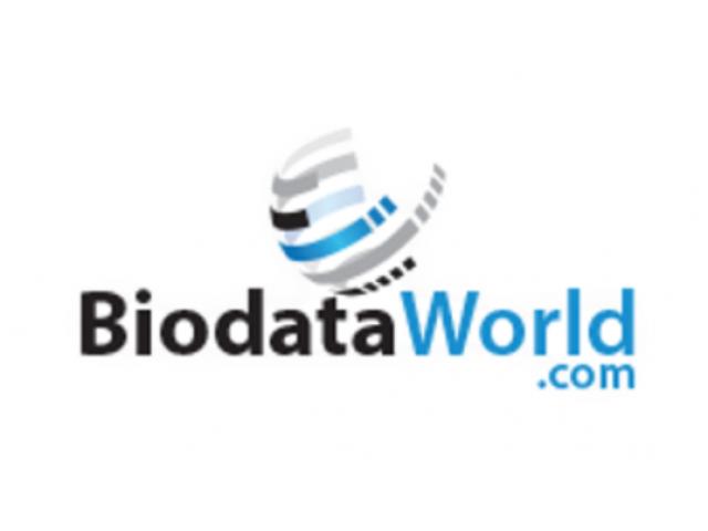 Consultancy services for recruiters online CV database-BiodataWorld