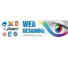 Best Web Design Company in New Ashok Nagar