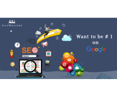 Quality Digital Marketing Services at Rs 9999 INR