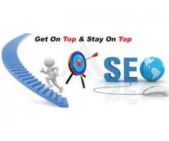 Search Engine Optimization India Company in iWeb Technologies