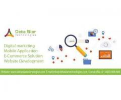 Matrimonial Website Development in Delhi