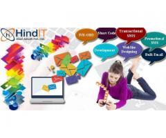 Bulk SMS Delhi,Bulk SMS Provider Delhi
