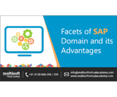 SAP Online Training Courses