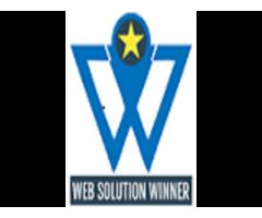 Social Media Marketing Strategy & Implementation - Web Solution Winner
