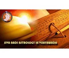 Siva Nadi Astrology in Vijayawada | Sivanadiastro