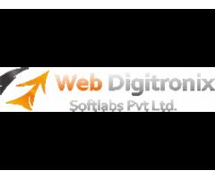 WebDigitronix.com: IT Company in Lucknow
