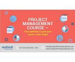 Project Management certification online courses