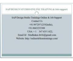 SAP Design Studio training for beginners