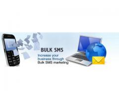 Bulk SMS Packages in Chandigarh