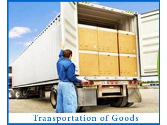Packers and Movers in Noida and Delhi 9891868220