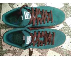 Brand New PUMA Casual Shoes