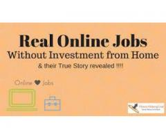 Excellent Opportunity to Earn From Home