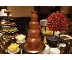 Yummy Chocolate Fountain With cookies   Contact   8288980007, Chandigarh