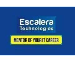 Startup Consulting and Training by Escalera Technologies