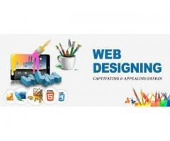 Best Web Design Services Company in India
