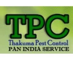 Pest Control Service in Kolkata