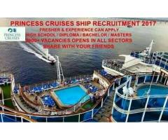 The Princess Cruise Ship And Land Base Company
