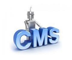 CMS WEBSITE DESIGN AND DEVELOPMENT SERVICES IN BANGALORE-INDIA