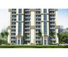Emaar Gurgaon Greens - 3 BHK apartments