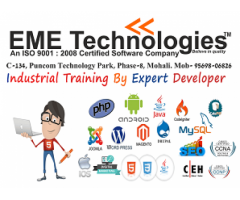 Search Engine Optimization Training In Mohali