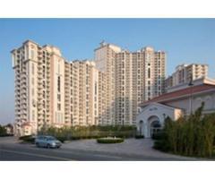 DLF Regal Gardens - Luxury 2/3 BHK Apartments on NH8