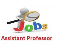 Latest Assistant Professor Jobs Opportunities in Delhi NCR