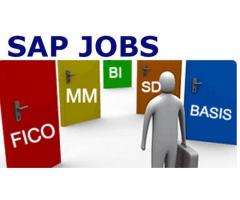 SAP HR Jobs