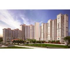 DLF Regal Gardens - Luxury Apartments by DLF