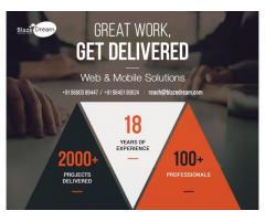 Best Web Design Company in India | BlazeDream | Web Development