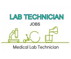 Latest Medical Lab Technician Job Openings in Noida
