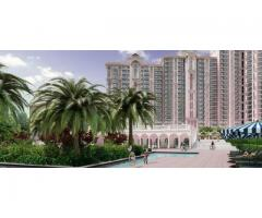 DLF Regal Gardens : Ready to move-in Apartments