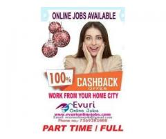 India's Best Money Making Program